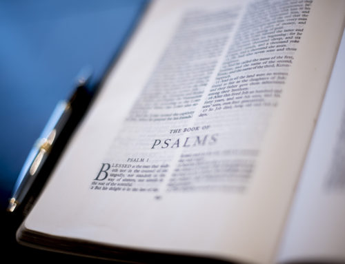 The Use of Italics in the King James Bible