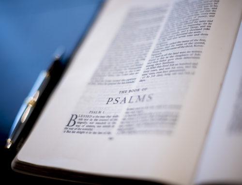 The Use ofItalicsin the King James Bible